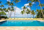 Tropical Resort Pool with Lounge Chairs, Palm Trees, and Ocean View
