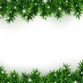 Christmas background with fir and stars. Vector illustration.