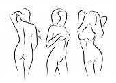 illustrations vector women naked human beauty body drawing
