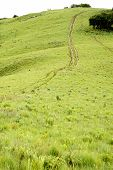 Dirt Track on Steep Hill, Traveling Off-Road, Africa