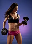 stock photo of body builder  - Studio photo of attractive female bodybuilder working out - JPG