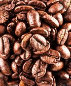 Brown Coffee Beans  Background Macro. Roasted Coffee Beans Background Texture. Food Backdrop Macro