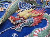 Dragon on wall