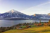 Swiss Rural Landscape Near Thun Lake At Morning Sunshine