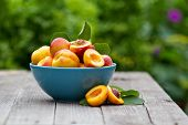 foto of peach  - Fresh peaches in blue bowl on wooden table - JPG