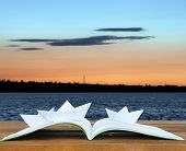 Origami boats on book on nature background