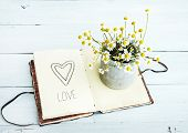 notebook with heart drawing and daisys in a pot