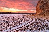 Winter Sunset On The Field