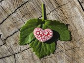 Red Speckled Heart On Leaf On Wood