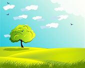 picture of grass bird  - landscape with trees cloud  sky  sun herb  grass  birds in different color - JPG