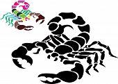 Scorpion Tattoo Vector