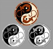 picture of harmony  - Dragon the yin yang - JPG