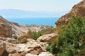 Ein Gedi Nature Reserve, Dead Sea