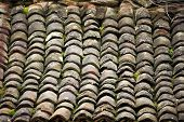 picture of roofs  - Old roof tiles are lined with moss on the roof - JPG