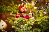Christmas Decorations Scene