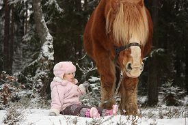 picture of big horse  - Small adorable girl sitting in the snow in forest and big palomino horse standing near  - JPG