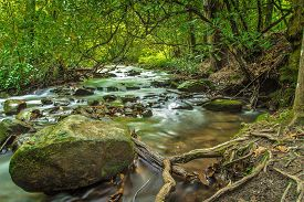 pic of smoky mountain  - Peaceful mountain stream serenades hikers as they trek through the pristine wilderness of the Great Smoky Mountains - JPG