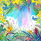 picture of jungle flowers  - Tropical flowers - JPG