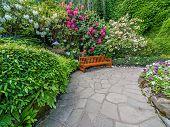 stock photo of vegetation  - Garden bench surrounded by lush spring vegetation - JPG
