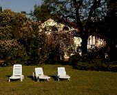 picture of lawn grass  - Loungers at lawn grass near privat cottage - JPG