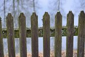 stock photo of bohemia  - old fence covered with moss South Bohemia Czech Republic - JPG
