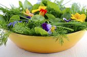 stock photo of edible  - Cooking with herbs concept with fresh herbs and edible flowers in modern yellow fry pan skillet on white wood table - JPG