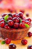Fresh red cranberries with leaves in basket