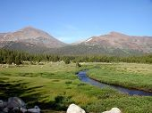 Tolumne Meadows, California
