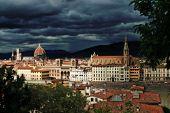 Florence #6