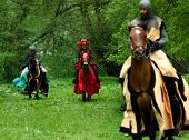 Nordische Ritter