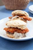picture of biscuits gravy  - Thinly sliced crispy fried chicken with creamy gravy and mushrooms on a fluffy biscuit - JPG