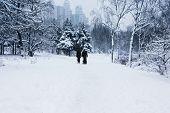 walking family in snowy park