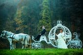 Wedding Couple In Carriage poster