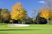 Autumn Golf Sandtrap