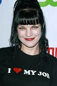 LOS ANGELES, CA - JUL 18: Pauley Perrette at the CBS CW Showtime Press Tour Stars party in Los Angel