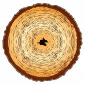Patrón de madera