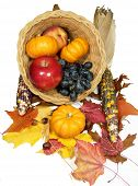 stock photo of cornicopia  - a cornucopia full of fruit for the thanksgiving holliday - JPG