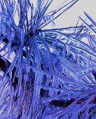 Blue Ice Tree