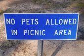 Sign - No Pets