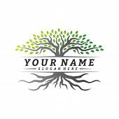 Colorful Vibrant Tree Logo Design Concept Vector. Root Of Tree Life Logo Design Template Inspiration poster