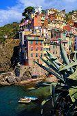 Colorful harbor at Riomaggiore, Cinque Terre, Italy