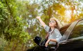 Enjoy Car Travel Of Woman Driving With Sunglasses Journey At Nature Forest In Summer Vacation Road T poster