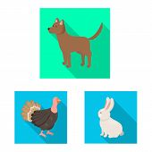 Vector Design Of Breeding And Kitchen Logo. Set Of Breeding And Organic Vector Icon For Stock. poster