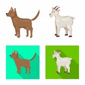 Vector Design Of Breeding And Kitchen Icon. Set Of Breeding And Organic Vector Icon For Stock. poster