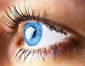 Beautiful Human Eye Close-up. Young Woman Blue One Eye Macro Shoot. Macro Shot Closeup Eye Looking U poster