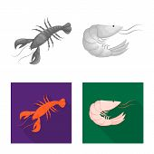 Vector Design Of Appetizer And Ocean Sign. Set Of Appetizer And Delicacy Vector Icon For Stock. poster