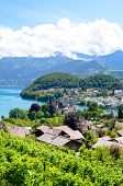 Beautiful Alpine Village Spiez Located By Lake Thun In Switzerland Photographed In The Summer Season poster