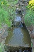 Japanese garden in pune city, Maharashtra, India