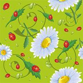 Daisy Pattern On A Light Background.eps