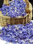 Larkspur Petal Confetti